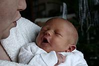Hebamme: Mutter und Baby